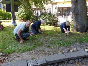 St Margarets bulb planting
